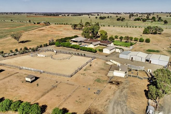 Picture of Serendipity 8L Sandy Pines Road, DUBBO NSW 2830