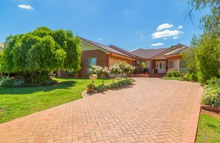 24 McMahon Street, Griffith NSW 2680