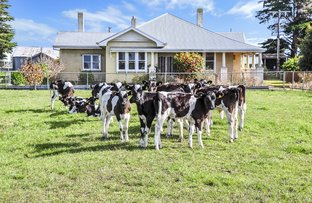 Picture of 125 Noogee Road, Terang VIC 3264