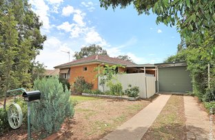 Picture of 44 Cox Avenue, Forest Hill NSW 2651