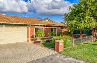 Picture of 16A Fransisco Street, Rivervale WA 6103