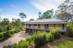 Picture of 115 Old Mill Road, Wolumla NSW 2550