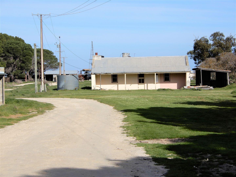 822 Two Wells Road, Tintinara SA 5266, Image 2