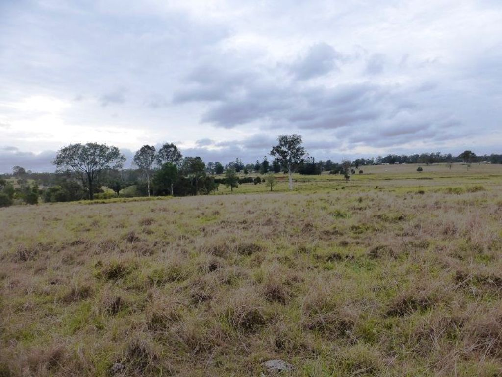 Lot 140 Scrub Road, Gunalda QLD 4570, Image 1