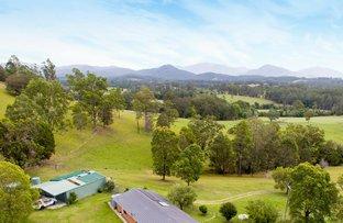 Rollands Plains NSW 2441