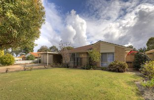 Picture of 26 Ilex Way, Forrestfield WA 6058