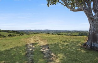 McLeans Ridges NSW 2480