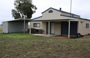 Picture of 695 Genowlan Rd, Glen Allice, Rylstone NSW 2849