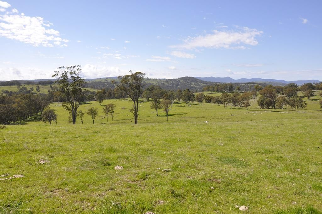 388 Quarry Road, Tenterfield NSW 2372, Image 0