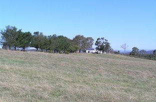 Picture of 188 Montaza Road, Gulgong NSW 2852