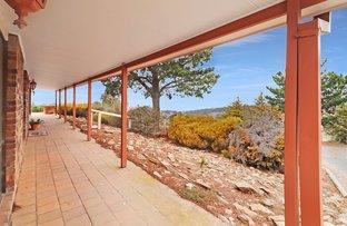 Picture of 47 Cherry Tree Lane, Bungendore NSW 2621