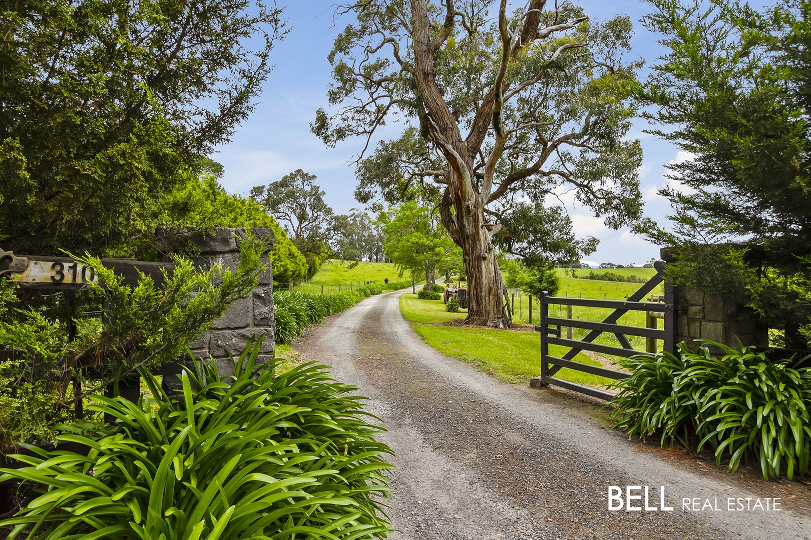 310 Beenak Road, Yellingbo VIC 3139, Image 1