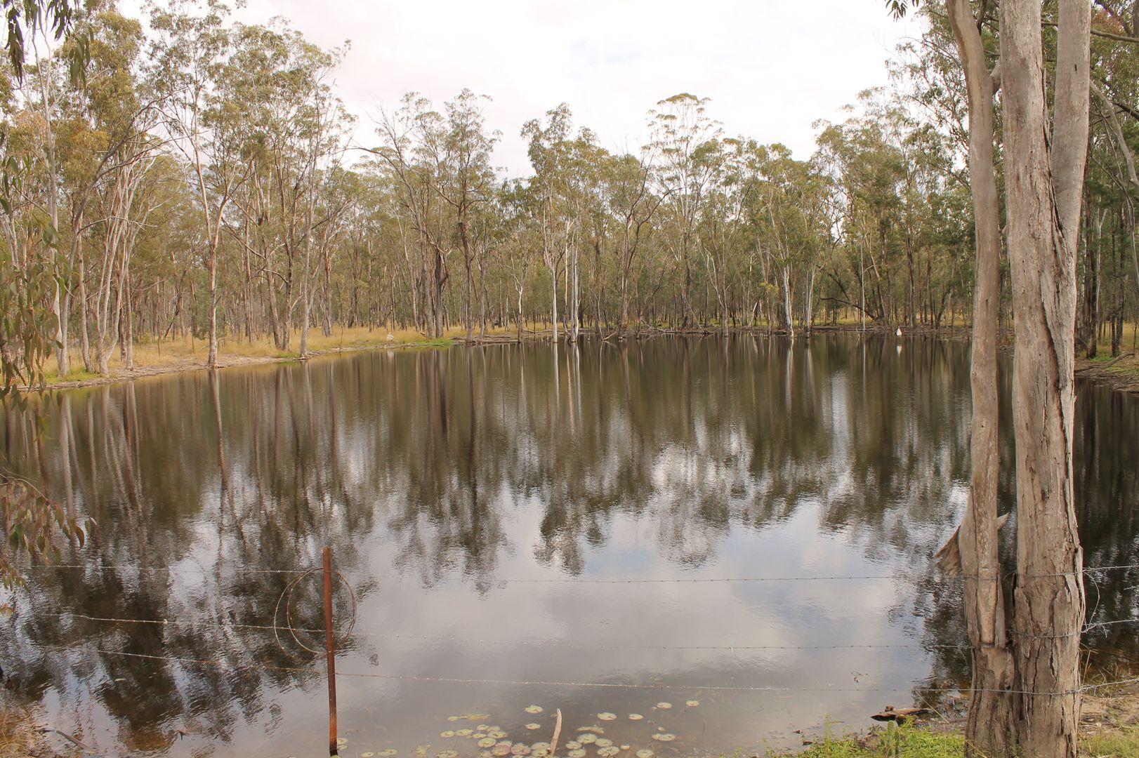 0 Halliford Road, Ducklo QLD 4405, Image 2