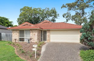 Picture of 12 Flynn  Place, Aspley QLD 4034