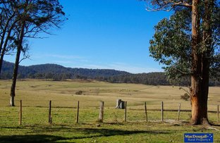 Picture of Haystack, Guyra NSW 2365