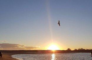 Picture of Alva QLD 4807