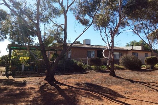 Picture of 174 Morchard Road, BOOLEROO CENTRE SA 5482