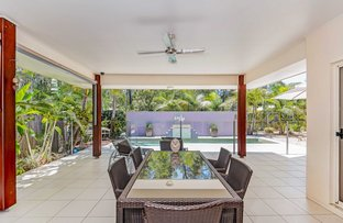 Picture of 3 Hovea Place, Tewantin QLD 4565