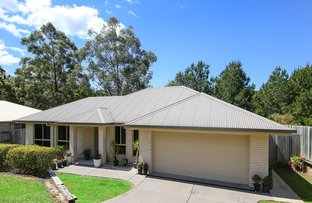 Picture of 7 Dianella Court, Cooroy QLD 4563