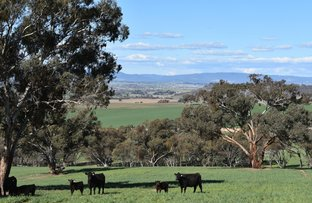 Picture of Bathurst NSW 2795