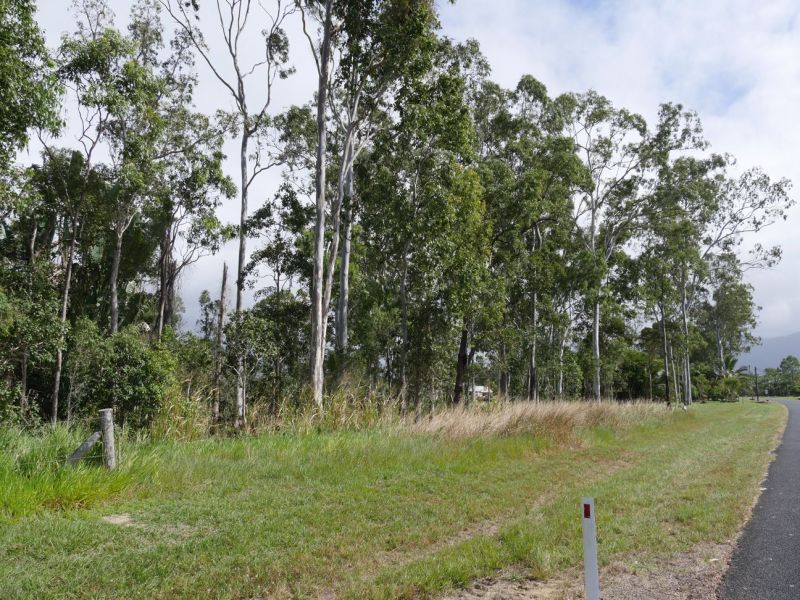Lot 16/RP836956 Ellerbeck Road, Carruchan QLD 4816, Image 2