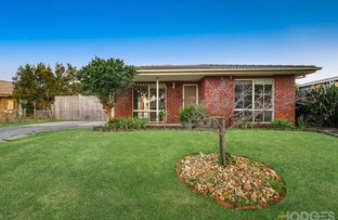 Picture of 14 Lansell Drive, Cranbourne North VIC 3977