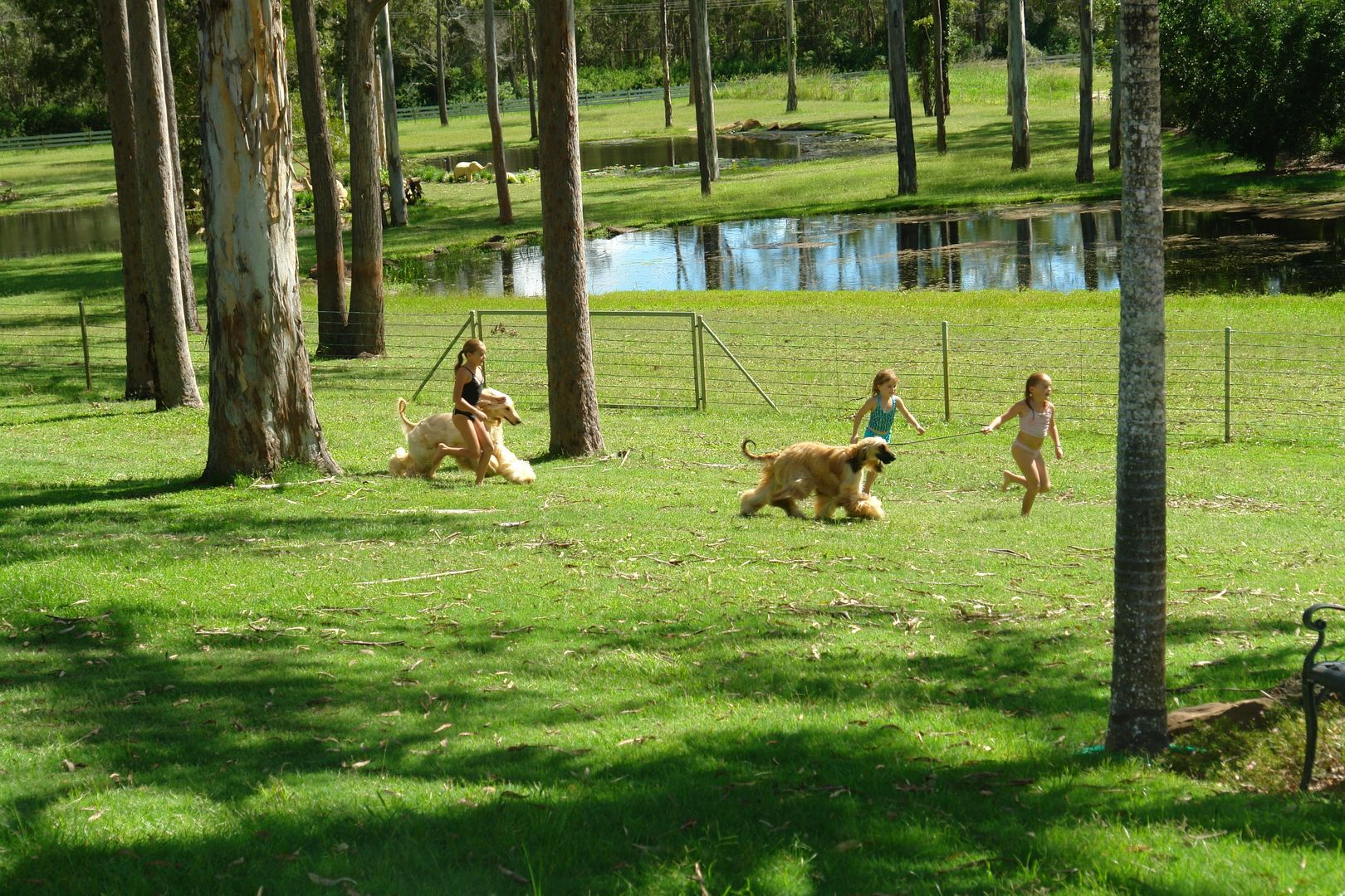 139 Wuduru Road, Cornubia QLD 4130, Image 2