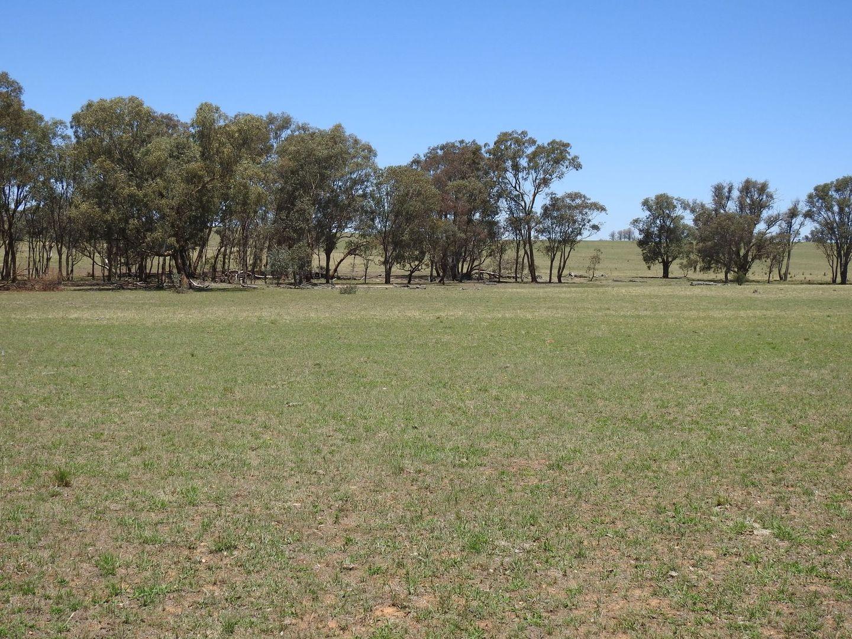 Lot 2/1350 Banjo Patterson Way, Molong NSW 2866, Image 0