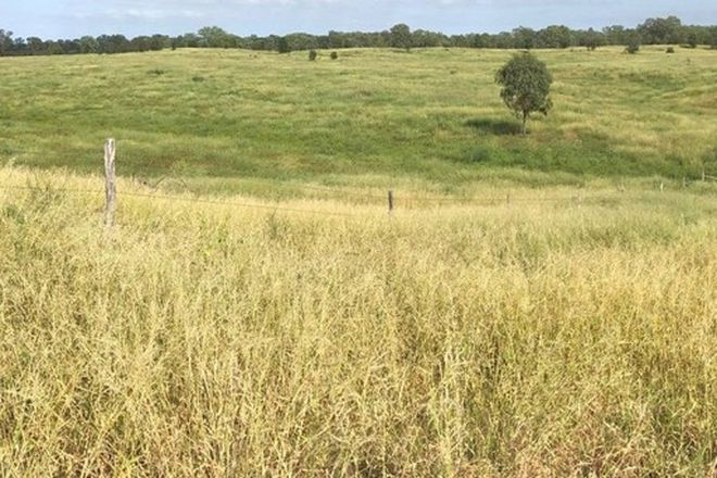 Picture of Lot 2 Thirsty Creek Road, GOGANGO QLD 4702