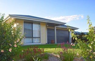 5 Tareeda Way, Nimbin NSW 2480