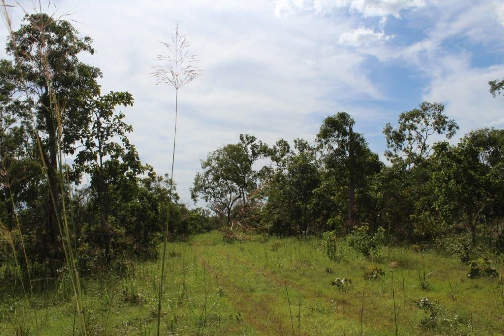 195 Mira Road, Berry Springs NT 0838, Image 2
