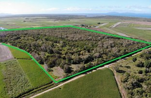 Picture of 2 Mandam Road, Braemeadows QLD 4850