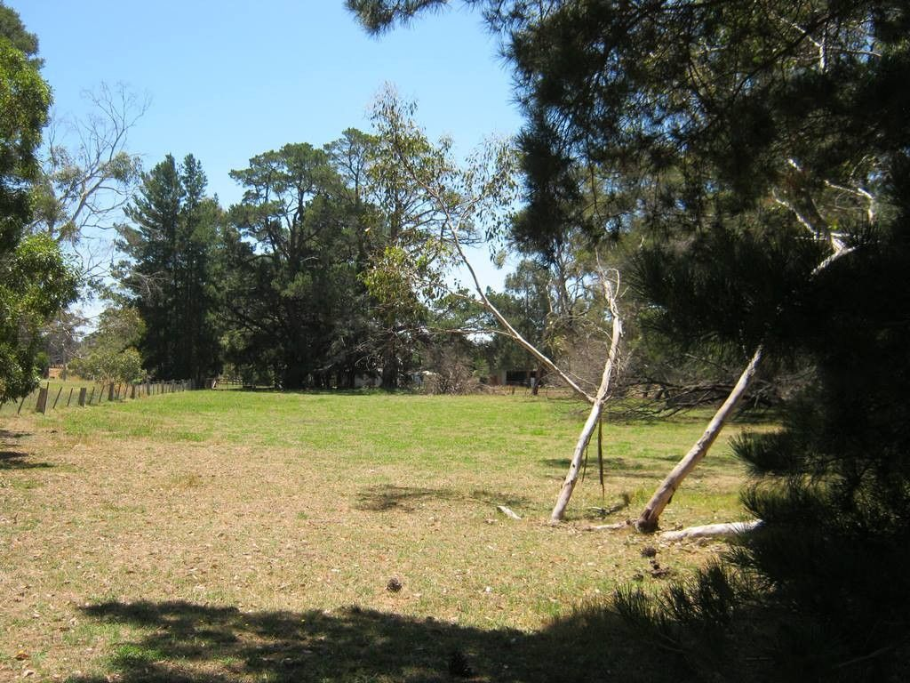 Lot 2 Hamilton-Port Fairy Road, Orford VIC 3284, Image 1