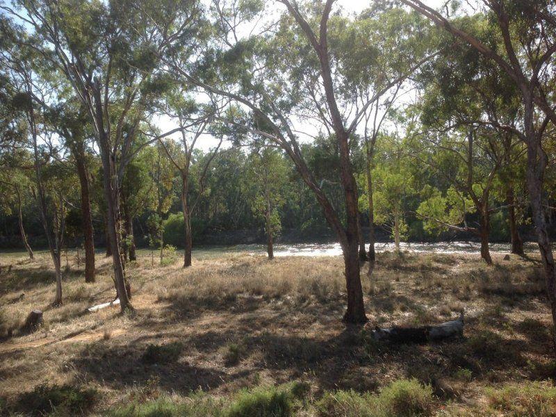 8 Rivergum Estate, Cobram VIC 3644, Image 0