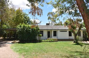 Picture of 11 Tirzah Street, Moree NSW 2400