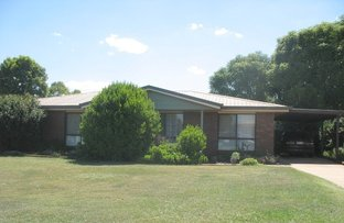 Picture of 3 Lister Court, Kingaroy QLD 4610