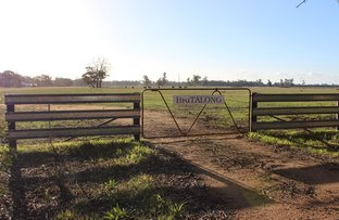 Picture of 139 Carmodys road, Locksley VIC 3665
