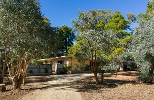 Picture of 6 Providence Gully Road, Sandon VIC 3462