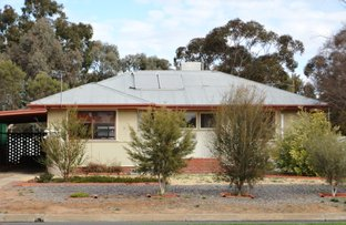 Picture of 62 Murray Street, Wentworth NSW 2648