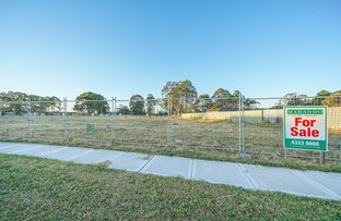 Picture of 37 Wakool Crescent, Woongarrah NSW 2259