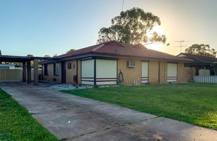 Picture of 6 Leschenaultia Place, Pinjarra WA 6208