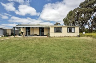 Picture of 43 Mildred Street, Kapunda SA 5373