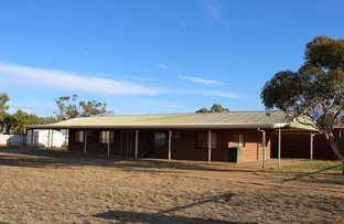 Picture of 48-50 King Street, Charleville QLD 4470
