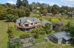 Picture of 17 King View Court, Kingston TAS 7050