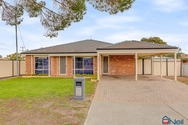 Picture of 60 Chisholm Circle, SEVILLE GROVE WA 6112