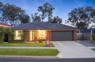 Picture of 15 St Levans  Place, Lavington NSW 2641