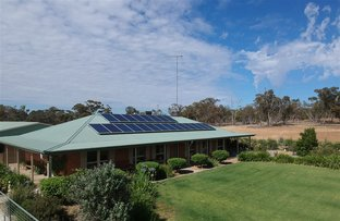 3147 MERRENGREEN RD, West Wyalong NSW 2671