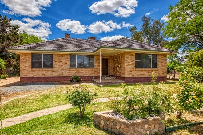 Picture of 100 Balfour  Street, CULCAIRN NSW 2660