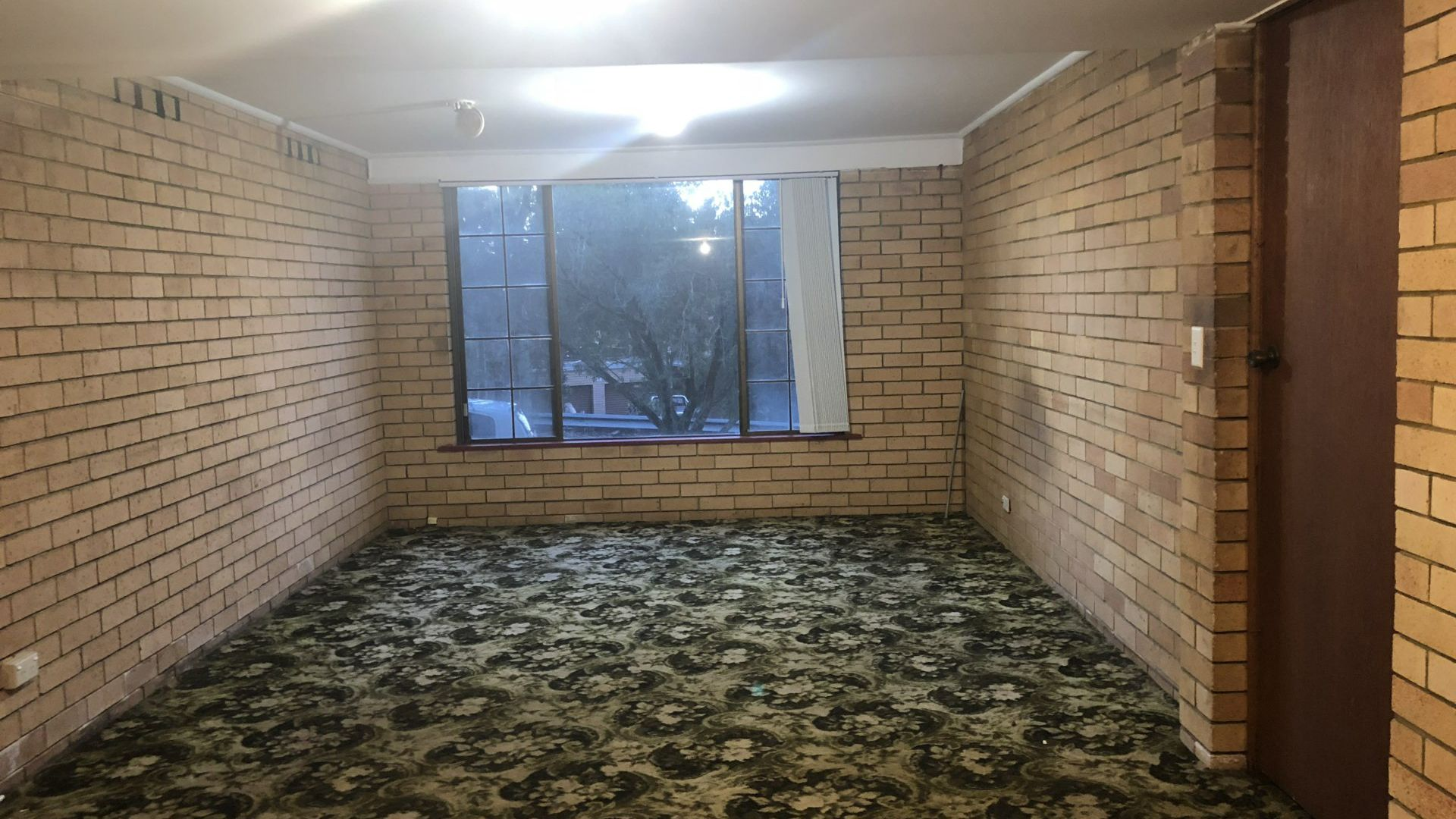 17 Princeton Avenue, Adamstown Heights NSW 2289, Image 1