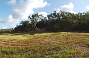 Picture of Devereux Creek QLD 4753